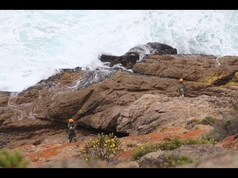 Missing mum and two children die after car plunges off 300ft cliff into sea – Today News